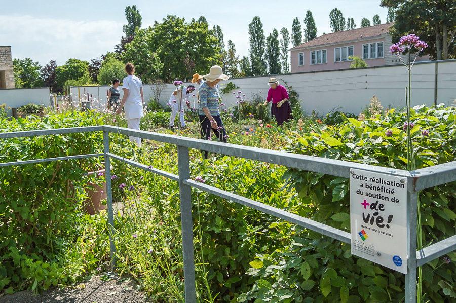 Cultiver un jardin pour le soin en g ronto psychiatrie for Jardin therapeutique