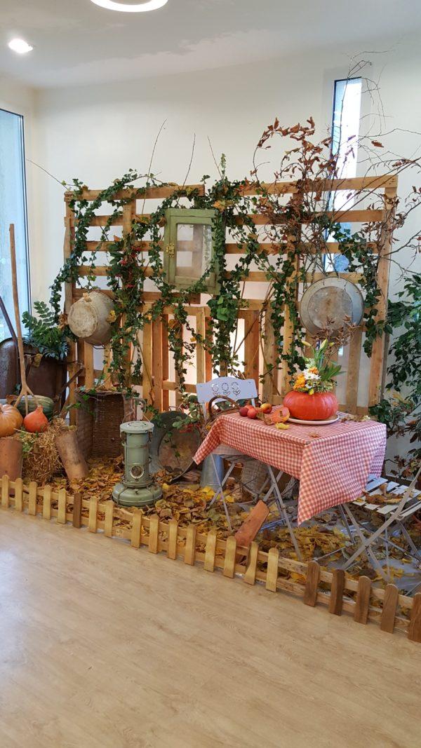 Installation mini potager à Nieuil