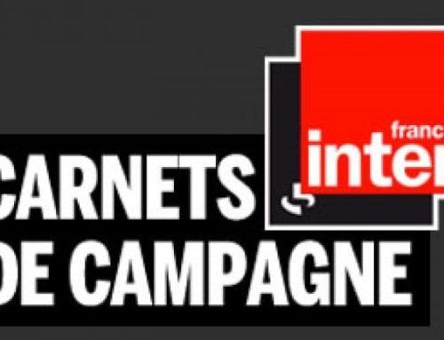 Carnet de campagne : la médiation animale au CH Laborit sur France Inter