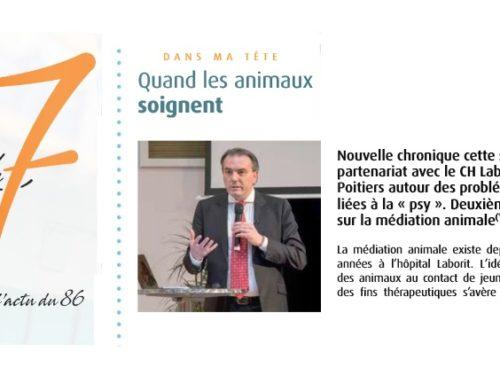 Chronique psy du 7 à Poitiers : «Quand les animaux soignent»