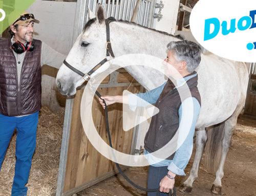 DuoDay sur France 3 : l'inclusion commence avec 17 duos à l'ESAT Essor