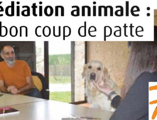 Reportage du 7 à Poitiers sur la Médiation animale au CH Laborit
